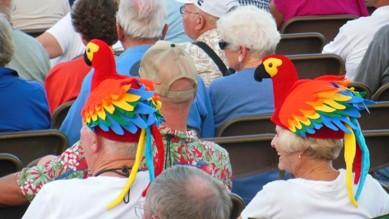 Concert Goers Hats