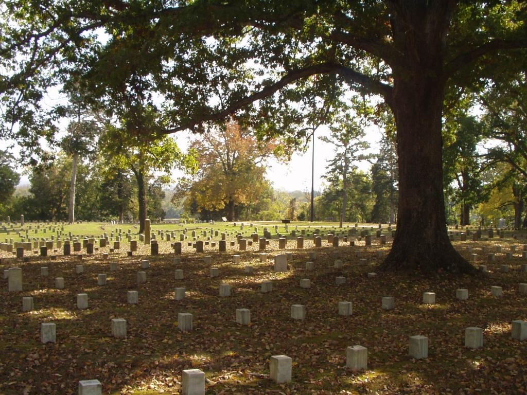 The Civil War Battlefield at Shiloh, TN