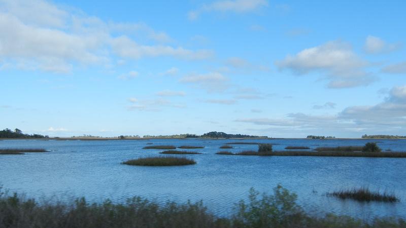 Cedar Key Archipelago